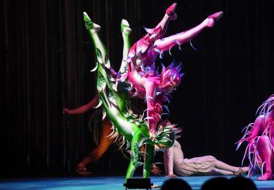 Cirque du Soleil in voorjaar 2017 in Amsterdam met Varekai